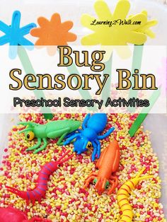 Bug Sensory Bin (Preschool Sensory Activities)