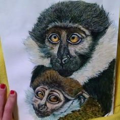 Monkey drawing by Amber Estes