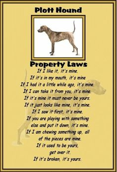 Plott Hound - Laminated A4 sign - Property Laws