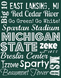 Give this gift-wrapped sign to your favorite Spartan, AND feed an orphan for a MONTH!! Michigan State University Subway Art on 11 by EstSignsFeedsOrphans, $30.00