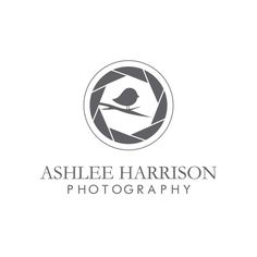 Bird photography logo design.