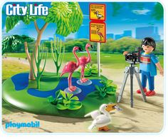 City Life: Zoo: Flamingos