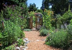 definition of the 12 permaculture principles and how they differ from just organic gardening. definition of the 12 permaculture principles and how they differ from just organic gardening. Permaculture Zones on of an Acre Permaculture Design, Permaculture Principles, Permaculture Garden, Garden Shrubs, Garden Soil, Organic Gardening Tips, Urban Farming, Edible Garden, Garden Planning