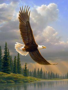 Voar é para os pássaros e para a minha imaginação…