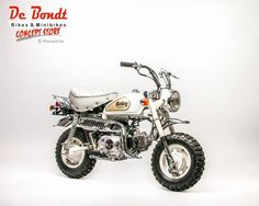 Honda white monkey