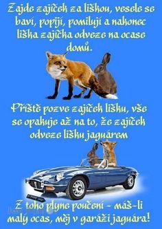 Humor, Humour, Moon Moon, Funny Humor, Lifting Humor, Chistes, Funny Jokes