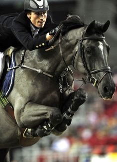 Look at that tuck. Lovely color too! Just think of the concentration required by both horse & rider.
