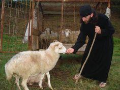 Monk and lamb. Orthodox Priest, Orthodox Christianity, Christian Church, Christian Faith, Prayer Book, Orthodox Icons, Buddhism, Lamb, Catholic