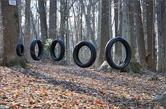 Nature photography - tire swing obstacle course in the woods, Westtown, Pennsylvania