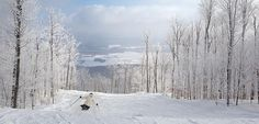 Ski Bromont.com   Flickr: partage de photos! Bromont, Skiing, Snow, Photos, Outdoor, Ski, Outdoors, Outdoor Living, Garden