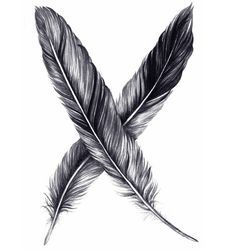 Tattoos on Pinterest   Raven Feather, Feather Drawing and Ravens