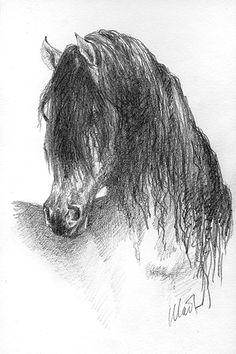 A sketch a day: horse head | Art Bits & Pieces - Yelena Shabrova's blog