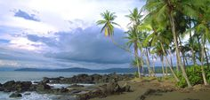 Corcovado, Costa Rica. So worth the projectile vomiting on the fishing trip back to Drake Bay.