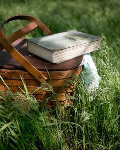 Beautiful summers day situation, a picnic and a book