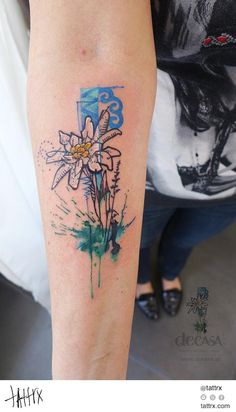 edelweiss watercolor - Cerca con Google