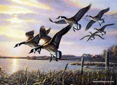 Artist James Meger Unframed Waterfowl Print Interlude Geese | WildlifePrints.com