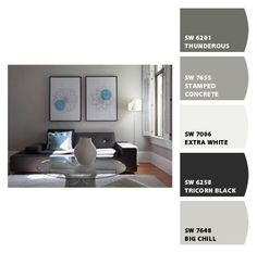 Sherwin Williams Gray Colour Palette  I like the big chill color