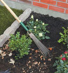 Lee Valley Bed Rake - Lee Valley Tools Lee Valley, Wood Joints, Garden Care, Weeding, Outdoor Gardens, Garden Tools, Plants, Four, Outdoor Spaces