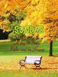 Good Morning Krishna, Outdoor Furniture, Outdoor Decor, Sunday, Park, Domingo, Parks, Backyard Furniture, Lawn Furniture