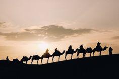 Sunset Camel Ride with Diner in Agafay Desert , Menorca, Cinque Terre, Footsteps In The Sand, Wadi Rum Jordan, Kombi Home, Jordan Photos, Jordan Travel, Outdoor Research, Lofoten