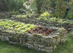 Stone raised beds. Maybe plant some creeping thyme or rock plants in the cracks?