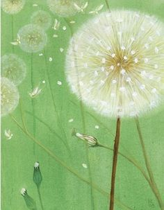 Dandelion Fairies by Kendal Cronkhite-Shaindlin - it calms me. Art And Illustration, Illustrations, Dandelion Clock, Dandelion Wish, Dandelions, Totoro, Painting Inspiration, Diy Art, Painting & Drawing