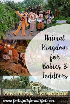 Animal kingdom map with character locations pinterest animal animal kingdom for babies toddlers gumiabroncs Gallery