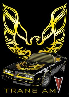 "Pontiac Trans Am FireBird Cross Stitch Pattern***L@@K*** YOUR FINISHED PATTERN SIZE. 270 Stitches x 360 Stitches 15.0"" X 20.0"" ON (18 COUNT) AIDA CLOTH. ~~ I SEND WORLD-WIDE ~~Free"