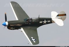 Curtiss P-40N Warhawk aircraft picture