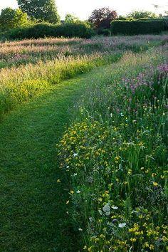 Adembenemend 23 Wildflower Garden For Your Backyard decorisme.co / ... Onthoudt wh ... - #Adembenemend #Backyard #decorismeco #Garden #Onthoudt #wh #Wildflower