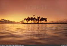 Palm-lined island at sunset bora bora tahiti. Millions of premium Stock photos and illustrations created by leading commercial photographers, world-famous Museums, Historical Archives and Private Collections. Image ID: Bora Bora, Photos Hd, Summer Photos, Travel Images, French Polynesia, South Pacific, Live Wallpapers, Travel And Leisure, Wonders Of The World