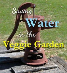 Saving Water in the Veggie Garden