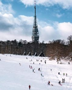 Bratislava, Tower, Snow, Building, Travel, Outdoor, Outdoors, Rook, Viajes