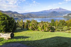 Lush Vegetation And Stunning Views In Lago Neltume, Panguipulli in Valdivia, Chile. Luxury Real Estate for sale. (ID: 10288588)