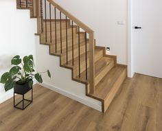 Modern Stair Railing, Stair Railing Design, Stair Decor, Modern Staircase, Interior Stairs, Home Interior Design, Balustrades, Hardwood Stairs, Entrance Foyer