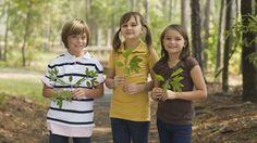 Kindergeburtstag im Wald: Spiele