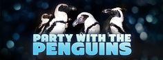Georgia Aquarium | Party with the Penguins