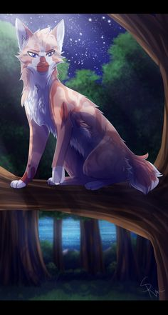 Seedpelt from Stormclan. Mate is Daisypetal. Kits:None He's  loyal and sweet. Both brother and sister are dead.