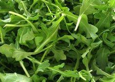Roquette : culture, semis et récolte