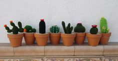 Esta vez no traigo muñecos. Desde siempre me han gustado los cactus. Pero tengo un problema no me duran mucho, se acaban muri...