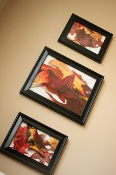 Easy Fall Decor for $6....Beautiful photography of leaves framed for the wall from Carrie This Home