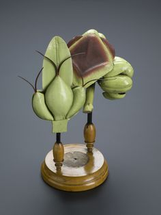 Victorian Botanical model - Google Search