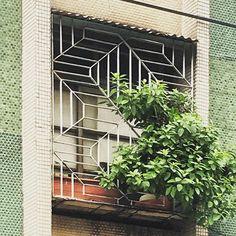 具動感的斜線窗  #老屋顏 #老房子 #老屋 #台灣 #鐵窗花 #無限重複 #鐵花窗 #面格子 #設計 #民居