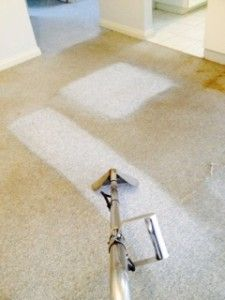 1000 Ideas About Carpet Cleaning Equipment On Pinterest