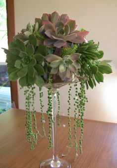 Draping tall succulent arrangement - I'm not a fan of succulents - but this would make an awesome gift for my friends that are!