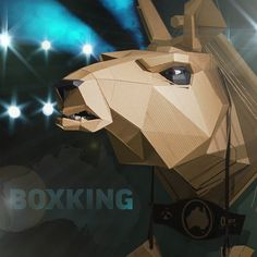 The australian fighter from circus! Please meet King of The Box! King Garoo! @behance portfolio: https://www.behance.net/gallery/19738231/King-Garoo