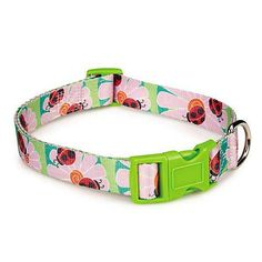 Zack  Zoey Flutter Bug Pet Collar 18 to 26Inch Ladybug >>> Click image to review more details.-It is an affiliate link to Amazon.