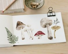 Watercolour mushrooms look great by themselves or as part of a larger painting. Artist Shayda Campbell explains how to paint watercolor mushrooms that look natural. She's created a YouTube tutorial with lots of expert tips too. Watercolor Paintings Nature, Watercolor Video, Watercolor Painting Techniques, Watercolor Sketchbook, Watercolor Galaxy, Watercolors, Mushroom Paint, Mushroom Drawing, Painting Inspiration