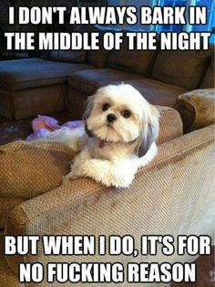 pardon my barking