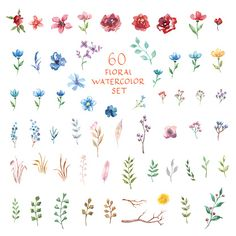 Different vector elements. royalty-free floral watercolor set different vector elements stock vector art & more images of art Baby Tattoos, Mini Tattoos, Body Art Tattoos, Tatoos, Small Flower Tattoos, Flower Tattoo Designs, Small Tattoos, Simplistic Tattoos, Natur Tattoos